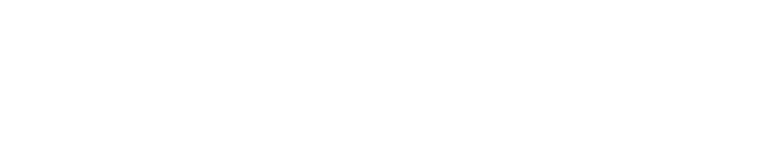 Ringer - rusztowania i szalunki